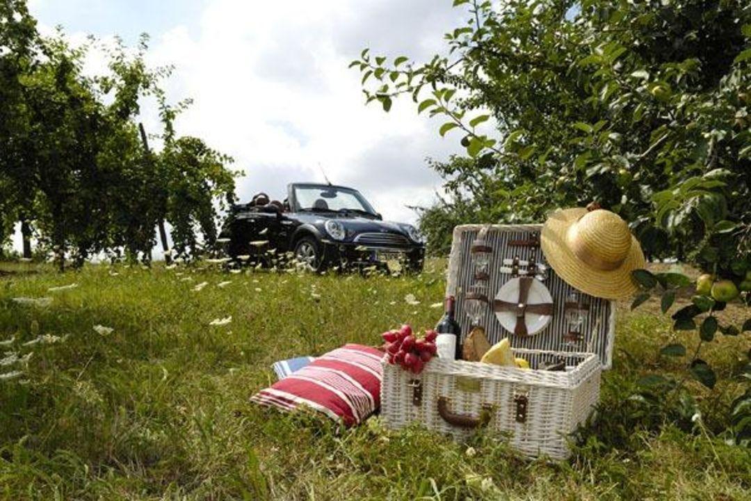 Der Picknick-Mini zum Ausleihen Hotel Becksteiner Rebenhof