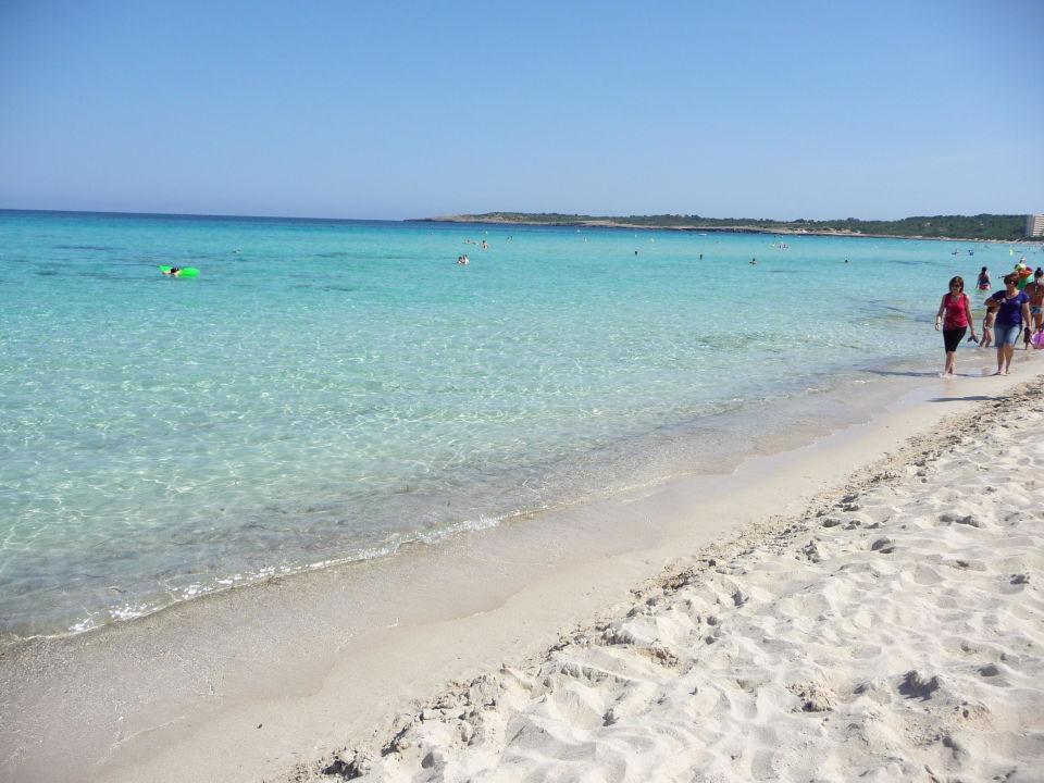 Der Schone Strand Hotel Girasol Cala Millor Holidaycheck