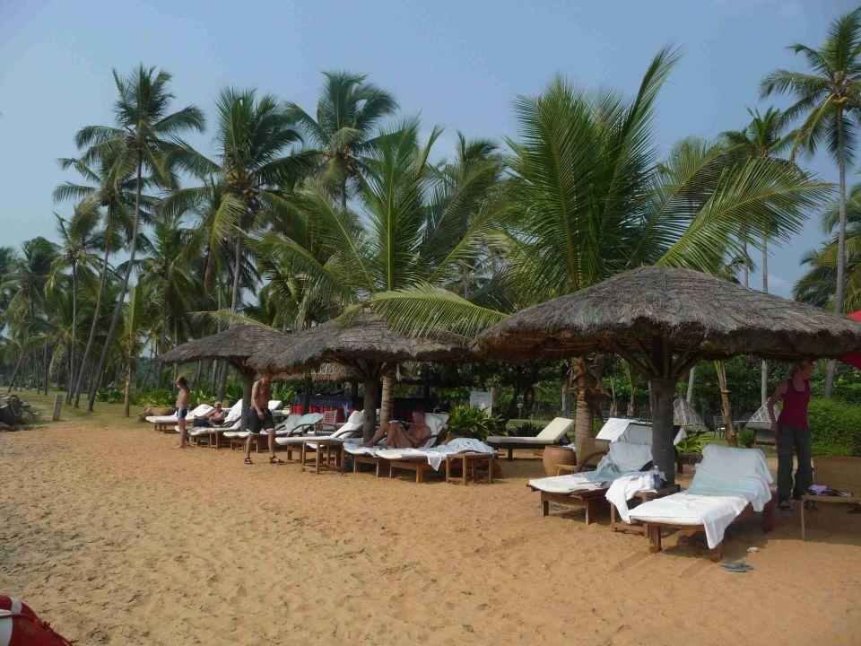 Absolut top Sandstrand Hotel Vivanta by Taj Kovalam