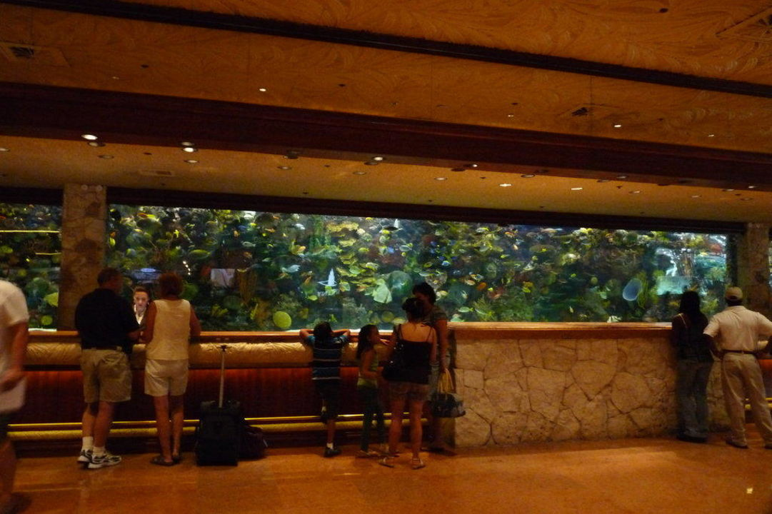 Riesenaquarium in der Lobby The Mirage