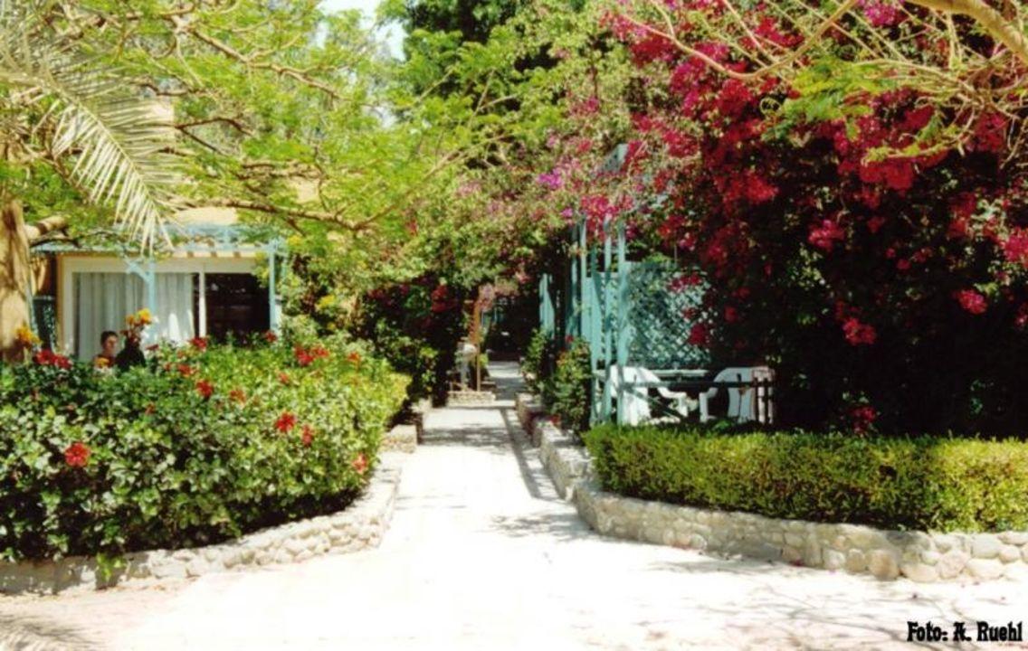 Hotel Giftun - Anlage Giftun Azur Resort