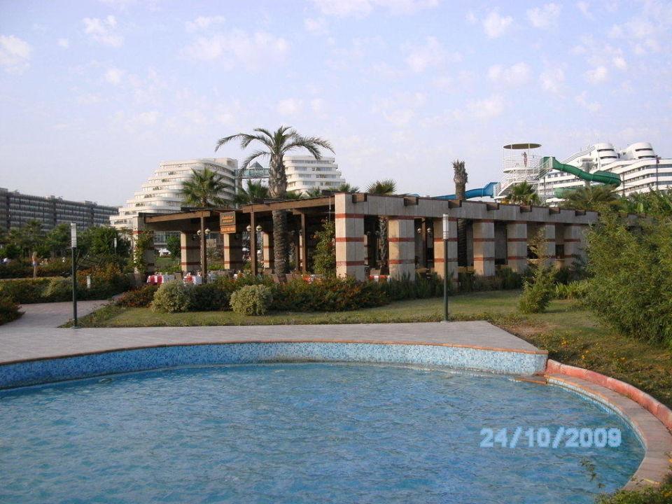 A la carte Restaurant Hotel Miracle Resort