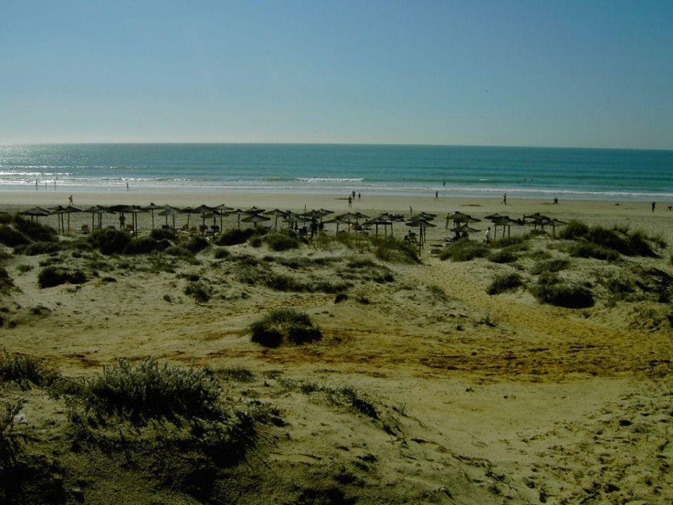 Blick auf den Strand Hipotels Barrosa Park