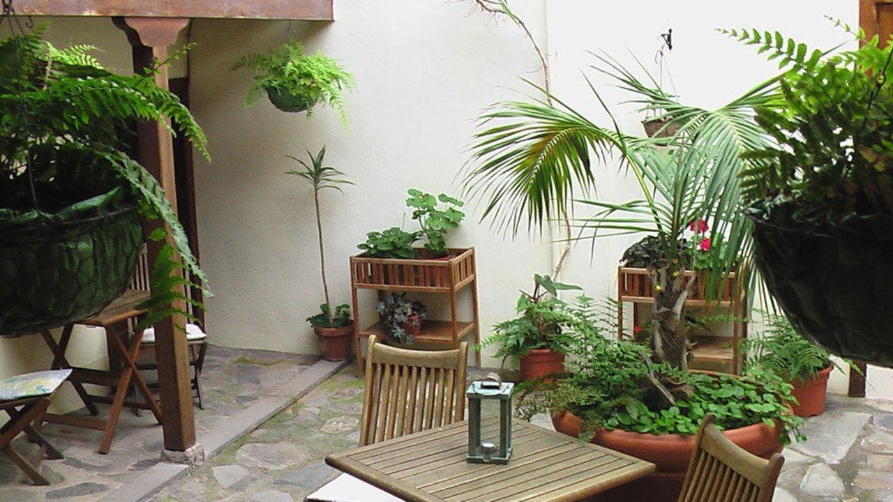 Patio Casa Rural Los Helechos Apartments