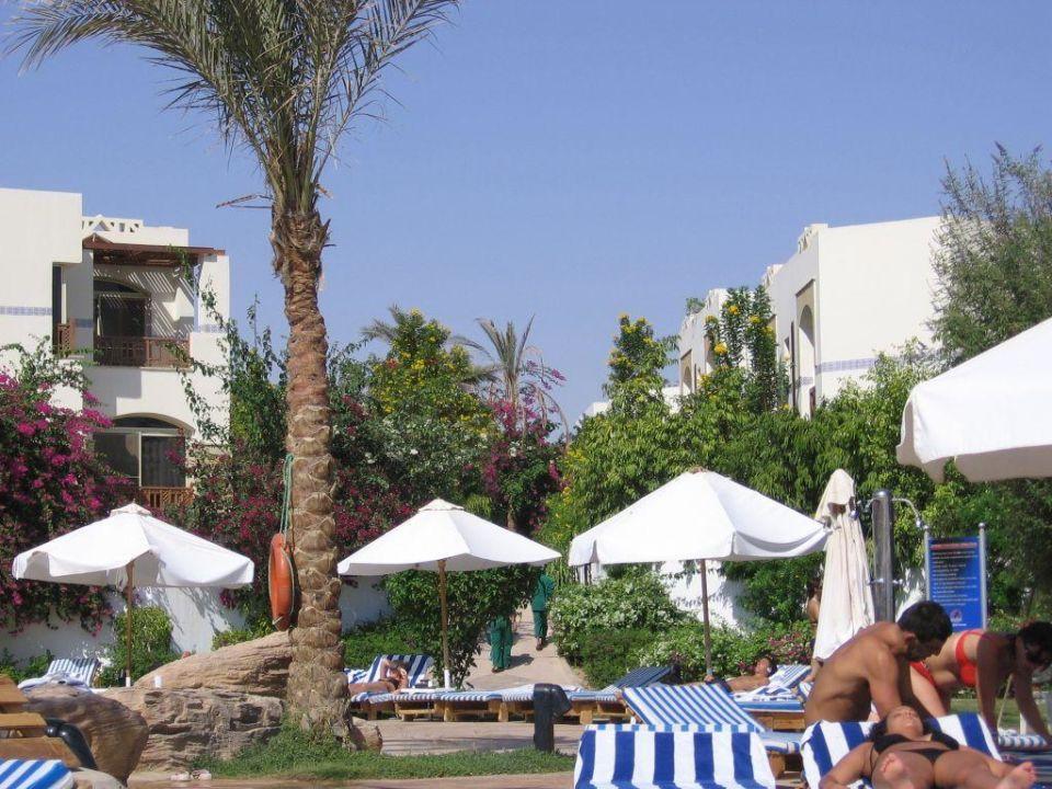 Basen przy plaży Shores Amphoras Resort