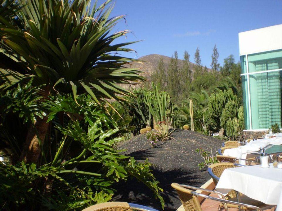Blick von der Terrasse allsun Hotel Esquinzo Beach