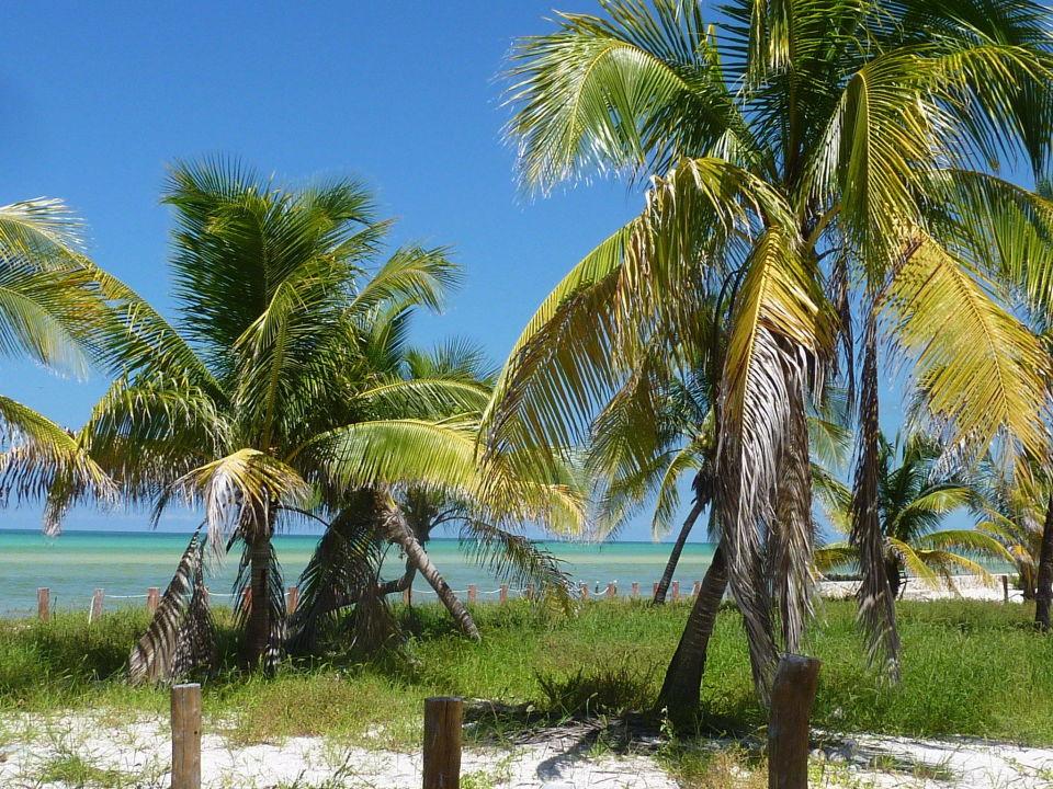 Paradisisch villas hm paraiso del mar in isla holbox for Villas hm paraiso del mar holbox