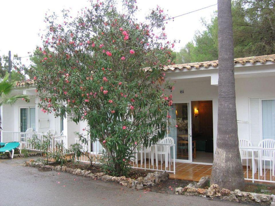 Zimmer Club Hotel Tropicana Mallorca