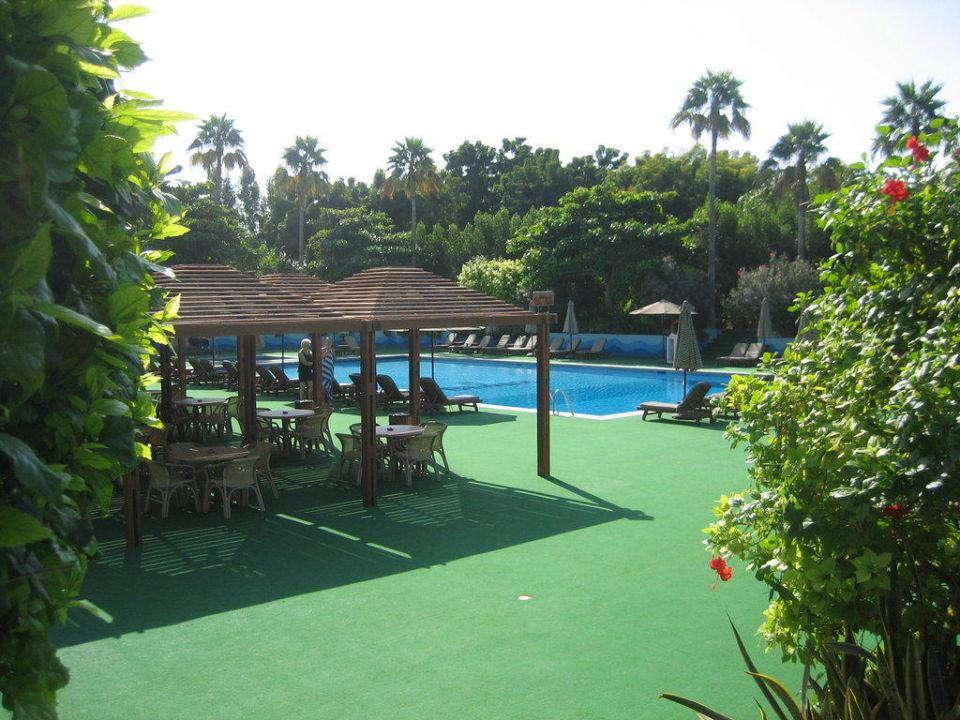 Pool Bin Majid Hotel