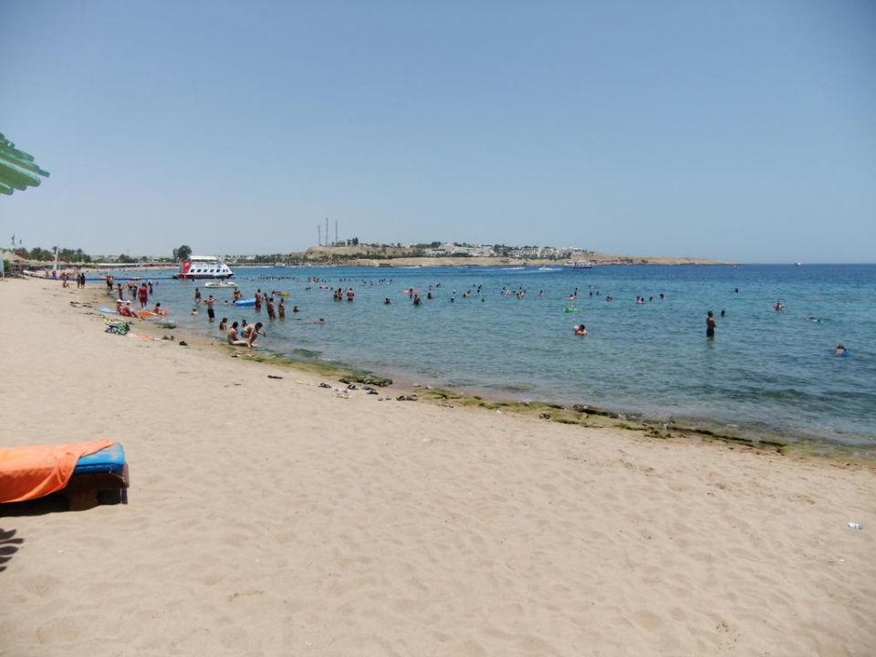 """Strand beim Ghazala Beach"" Hotel Ghazala Gardens in Sharm ..."