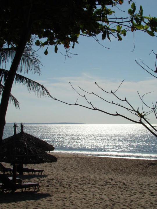 Blick zum Strand Hotel Blue Ocean Resort