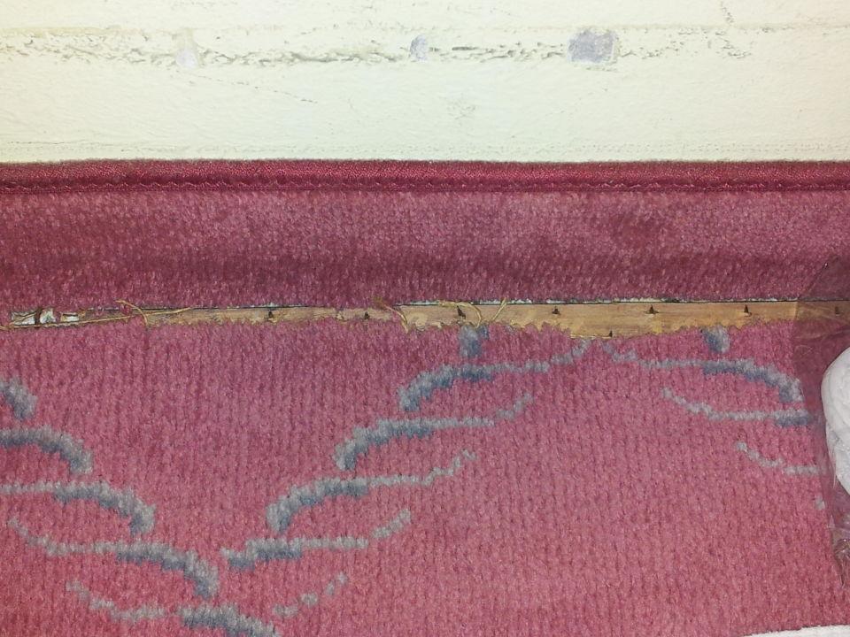 Bild Teppich zu Kempinski Hotel Frankfurt Gravenbruch in