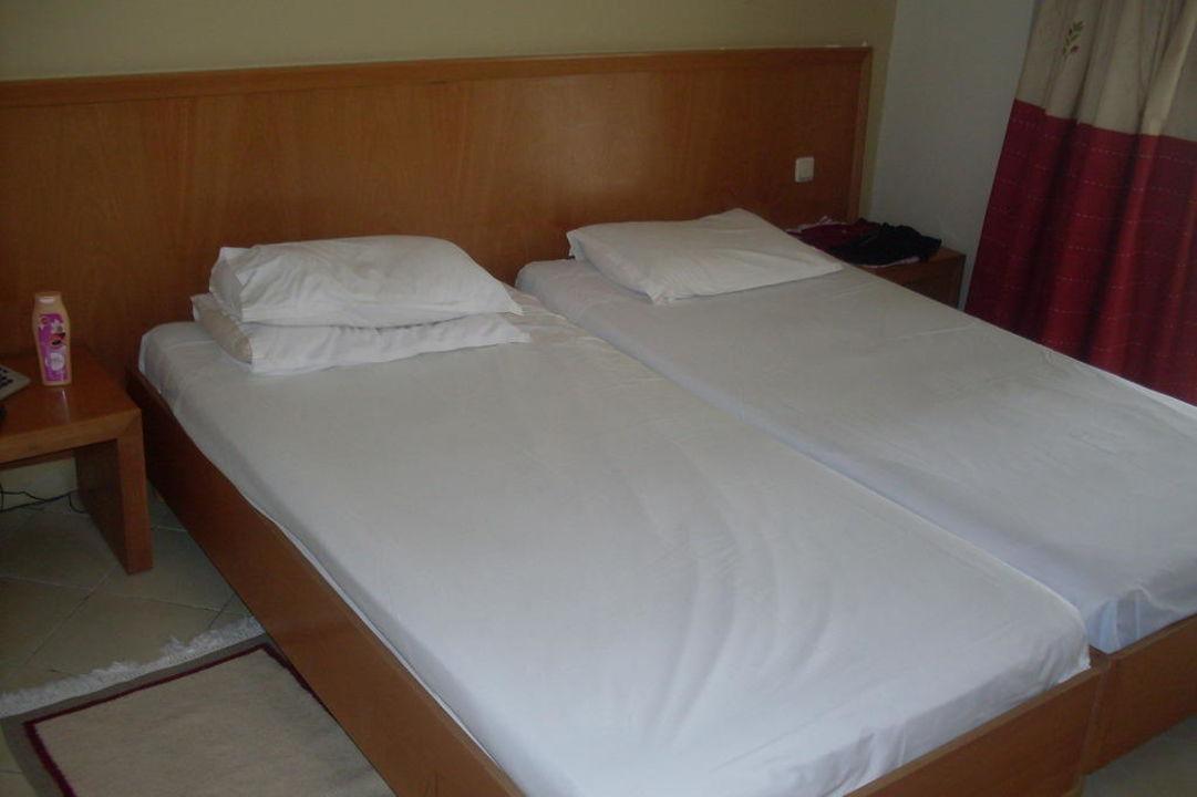 An den ersten 5 Tagen  Hotel Thalassa Mahdia