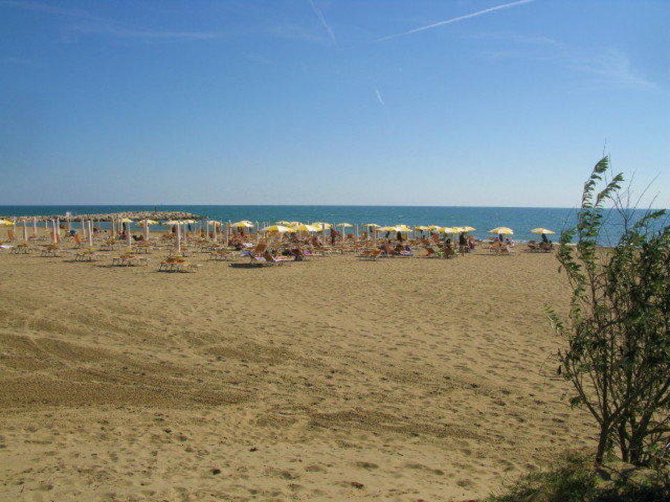 Strandbereich mit Miet-Sonnenstühlen- und schirmen Camping Union Lido