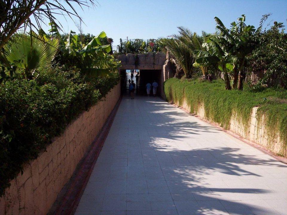 Unterführung zum Strand Amelia Beach Resort Hotel & Spa