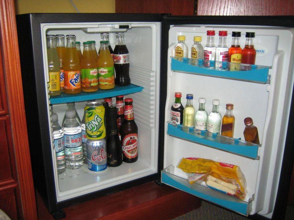 Mini Kühlschrank Hotel : Electrolux rh hotel mini kühlschrank vol l mit fehler in