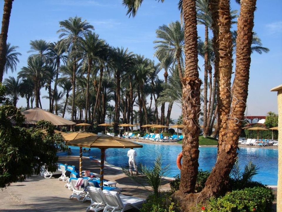 Pool Mercure Luxor Karnak