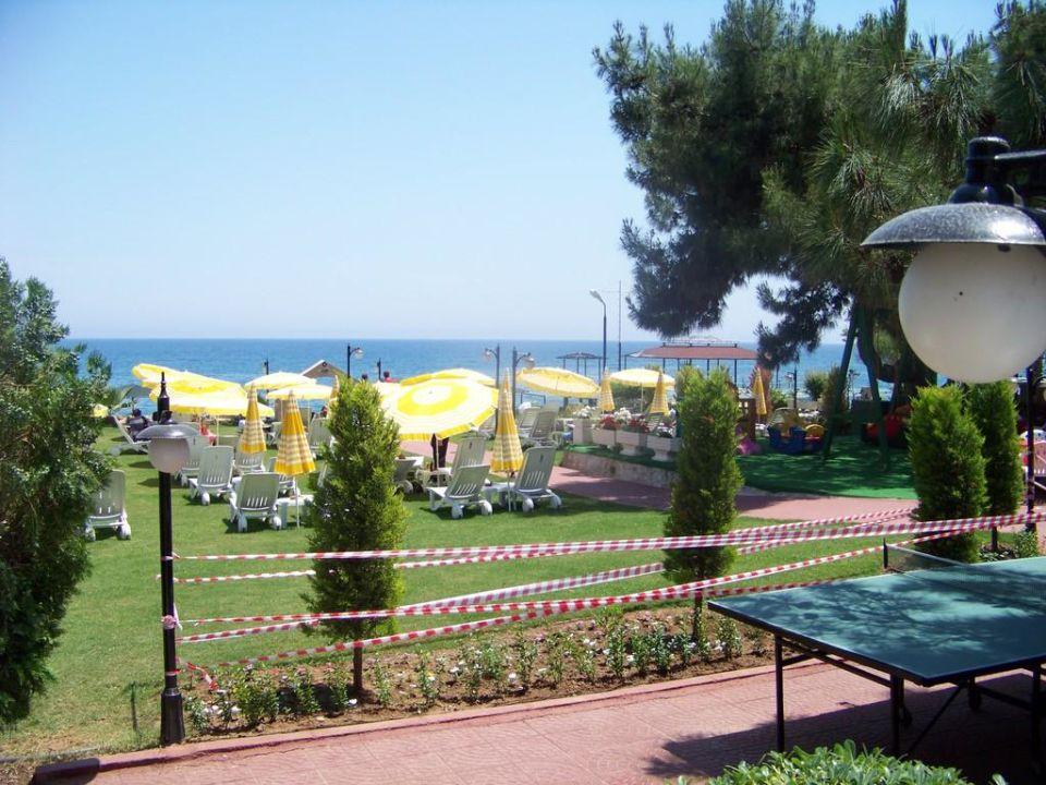 Hotel Sydney 2000 Elegance Beach Resort