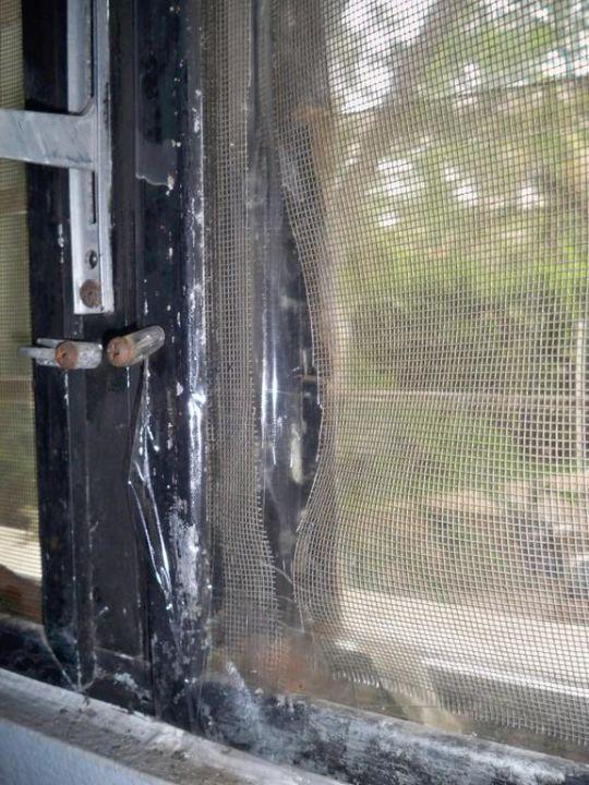 Mückengitter Pension Anneliese  (geschlossen)