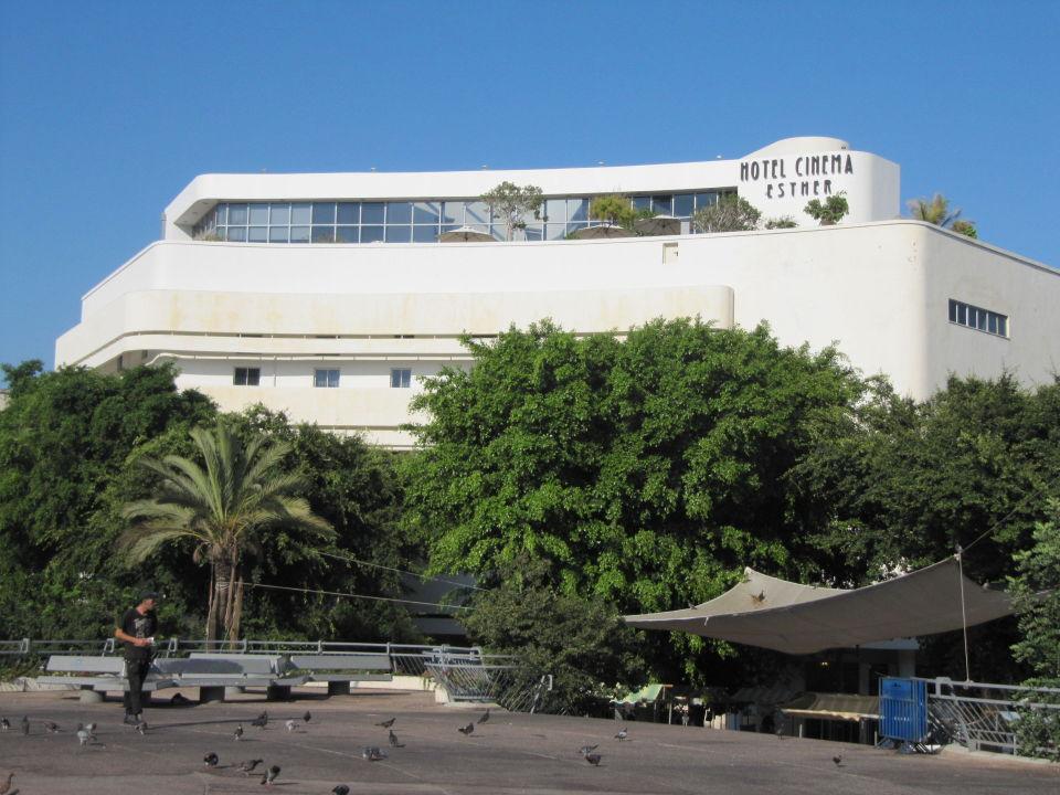Hotel  Hotel Cinema
