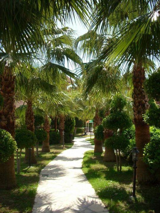 Gartenanlage, Weg zum Pool Larissa Stone Palace Resort