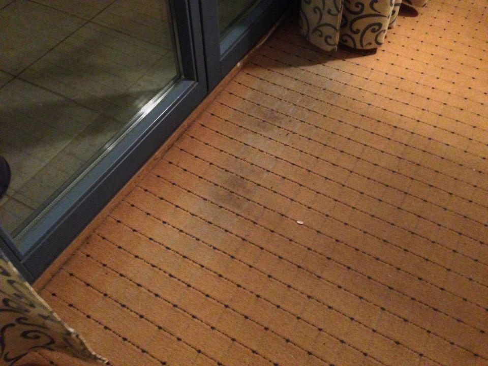 Teppich total ecklig Hotel Sofia in Goldstrand