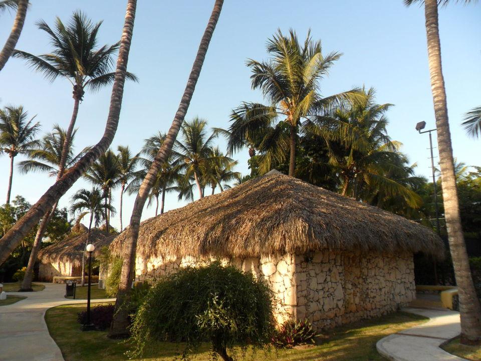Unser Bungalow Hotel Viva Wyndham Dominicus Beach