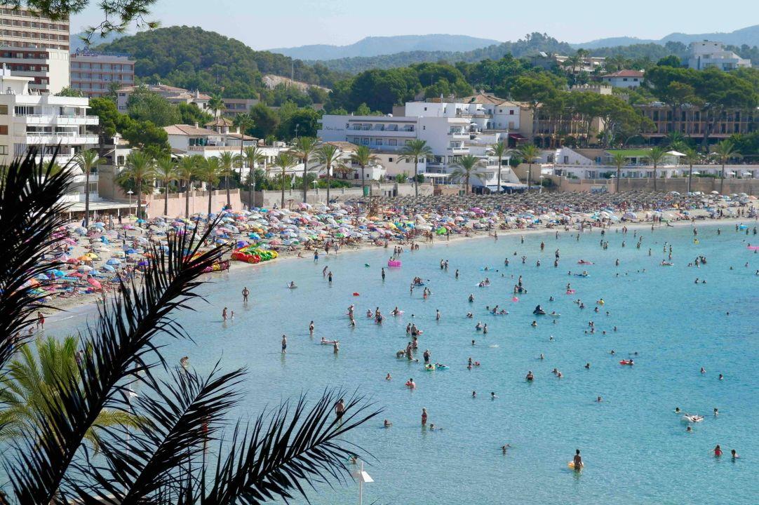 Blick Auf Den Strand Allsun Hotel Paguera Park Peguera