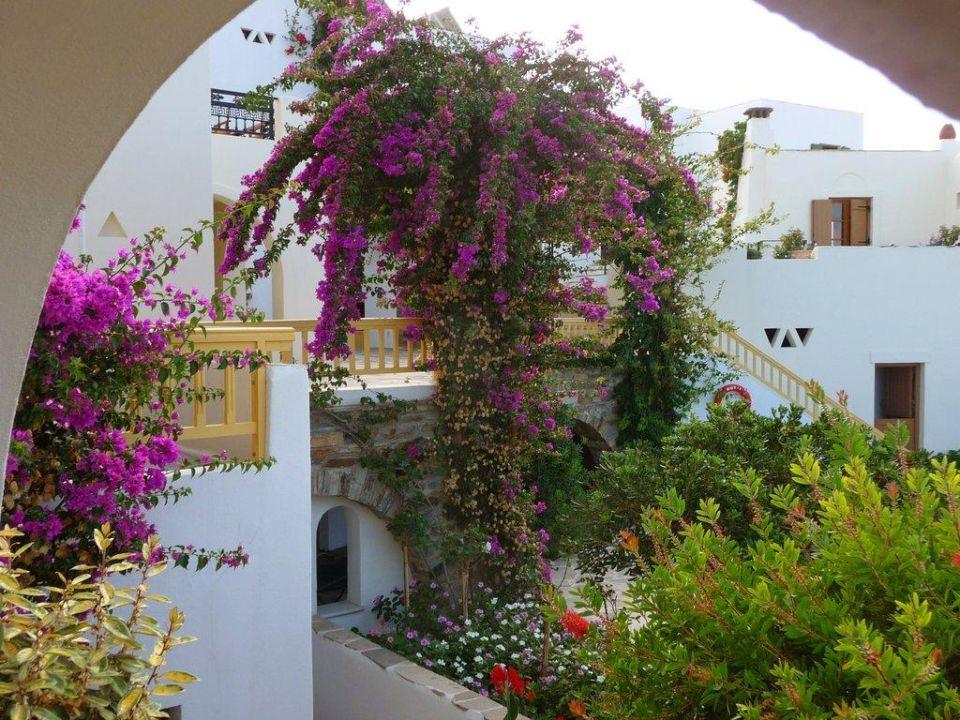 Ausblick von meinem Balkon Hotel Proteas