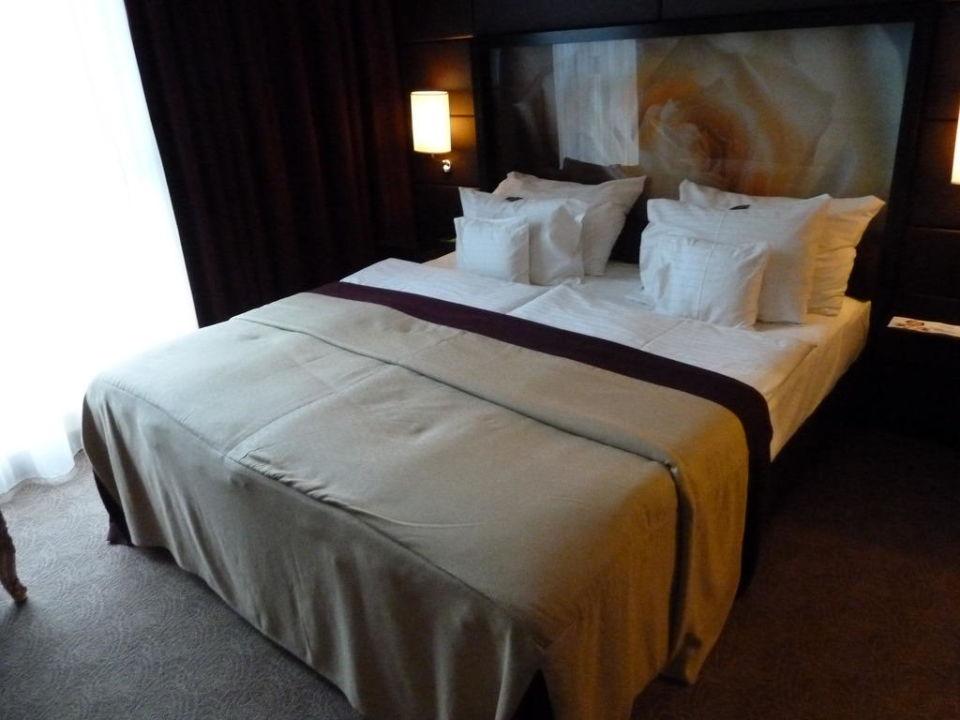 """king size bett"""" lindner hotel am belvedere in wien • holidaycheck, Hause deko"""