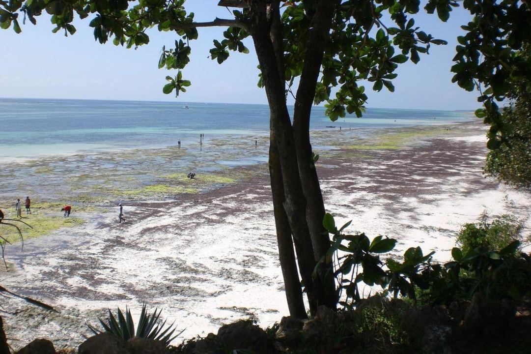 Strand bei Ebbe Baobab Beach Resort & Spa