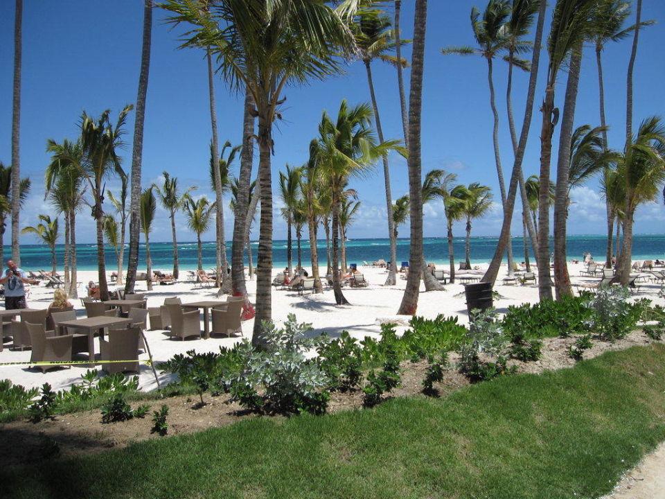Strandbar Secrets Royal Beach Punta Cana - Adults only
