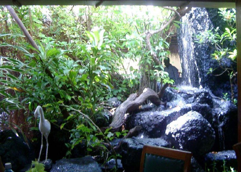 Wasserfall Summer Island Maldives