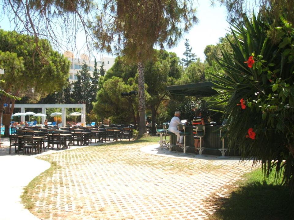 Widok na basen i bar przy basenie Hotel Arinna  (existiert nicht mehr)