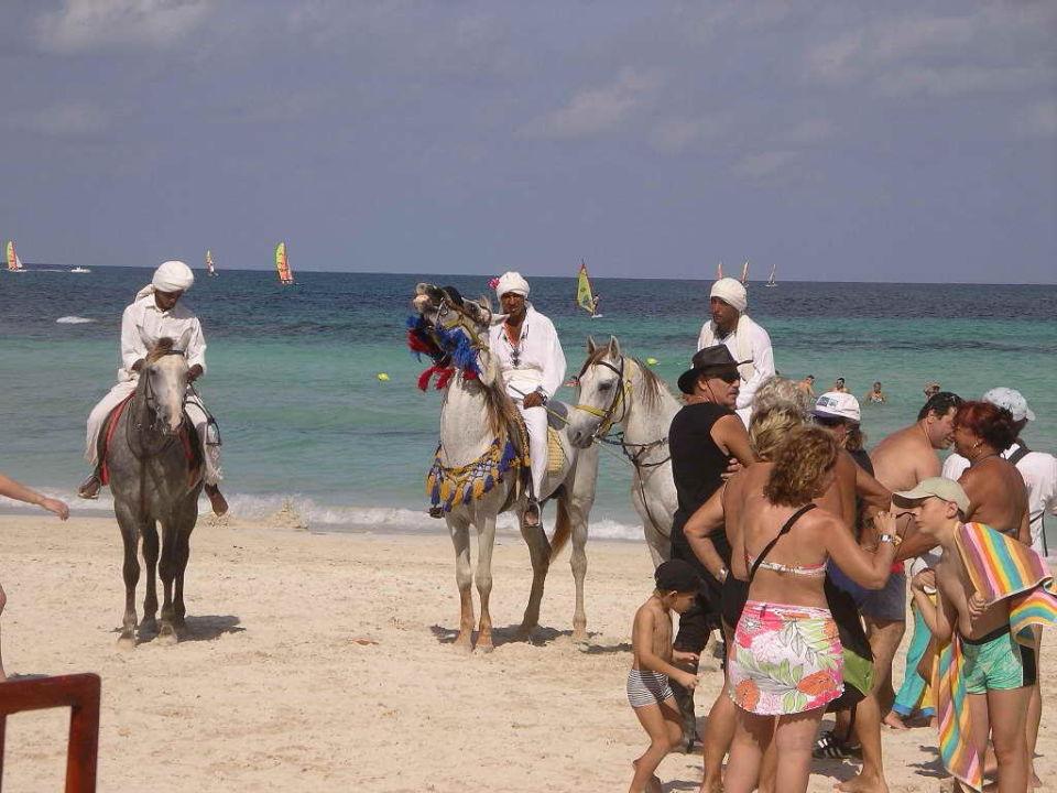 Reiterspiele am Rym Beach Hotel Seabel Rym Beach Djerba