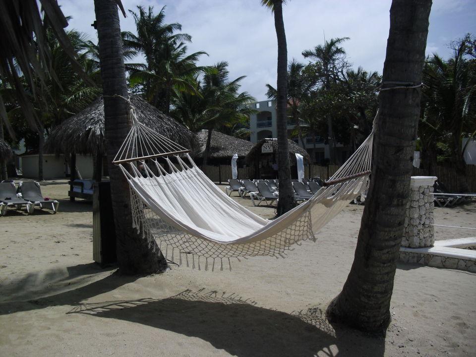 Hängematte  Cofresi Palm Beach & Spa Resort