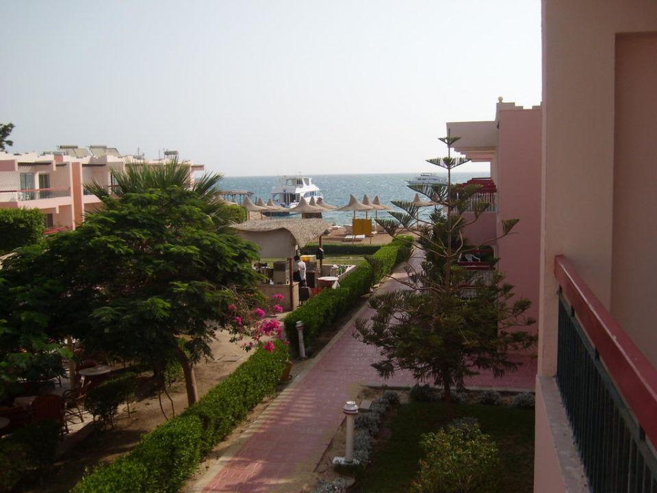 Na plażę żabi skok Hotel Beirut