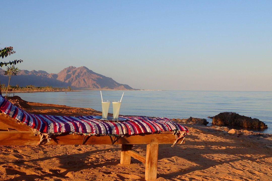 Sun, Sea and fresh fruit juice Bedouin Star Bungalows