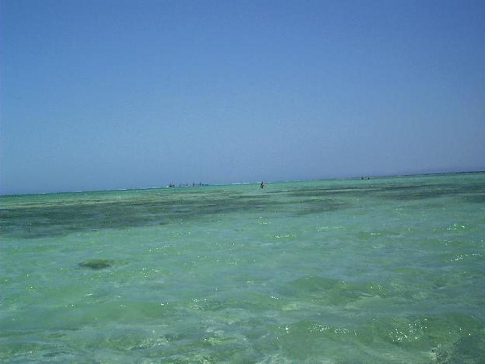 Grand Azure Resort - Sharm el Sheikh - Ägypten Tropicana Grand Azure Resort  (geschlossen)