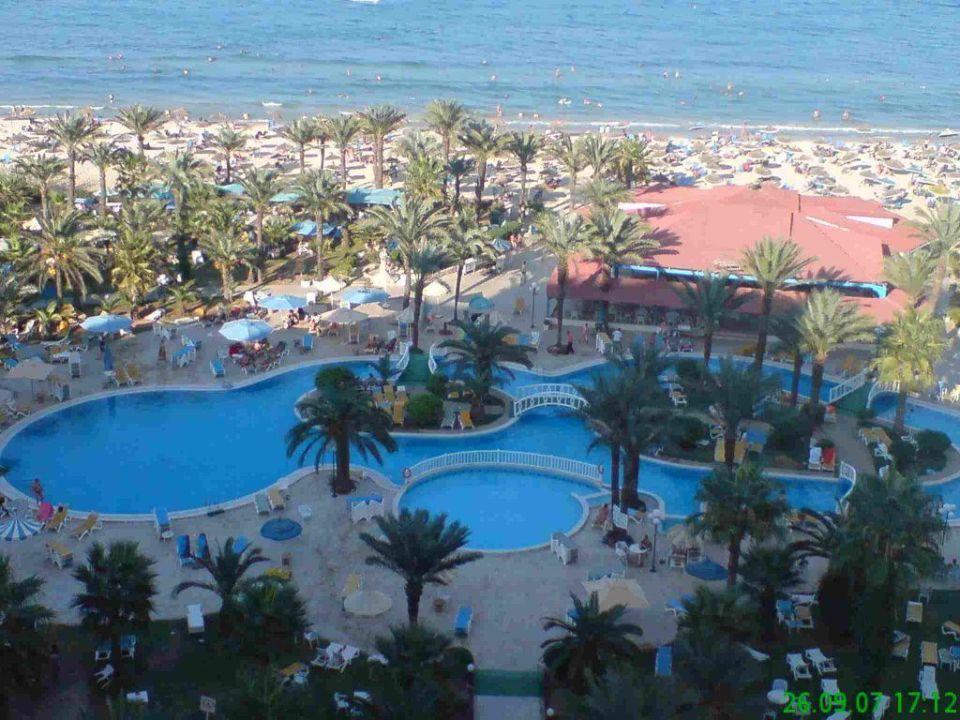 Bild das zimmer zu hotel riadh palms in sousse for Zimmer 75 00 37