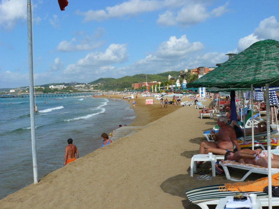 Beach Top Hotel