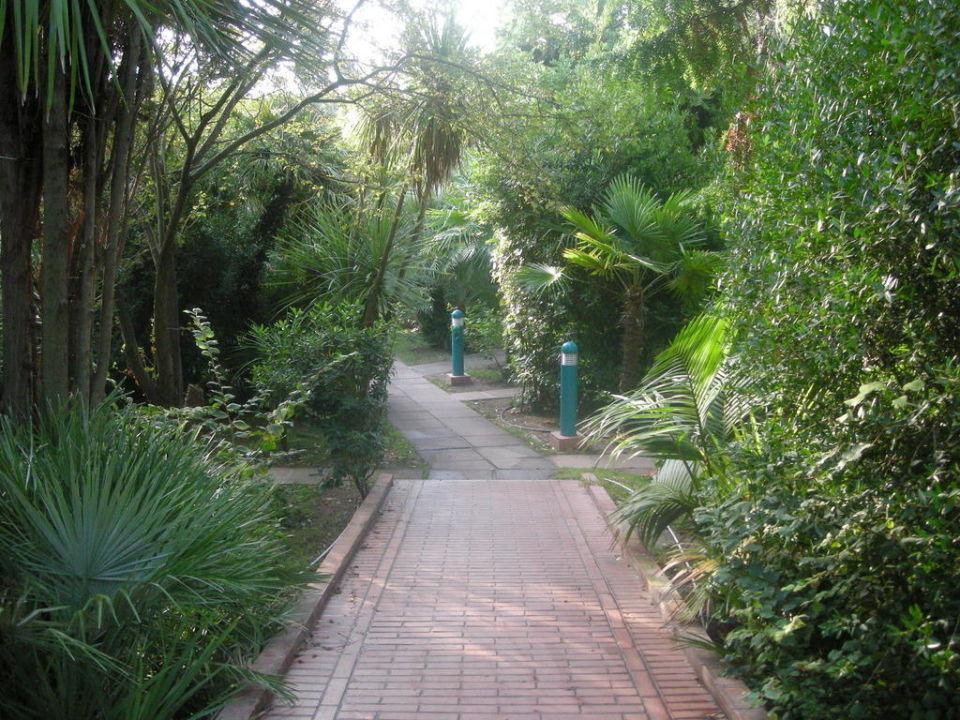 I viali di accesso ai bongalow Forte Village Resort - Bouganville