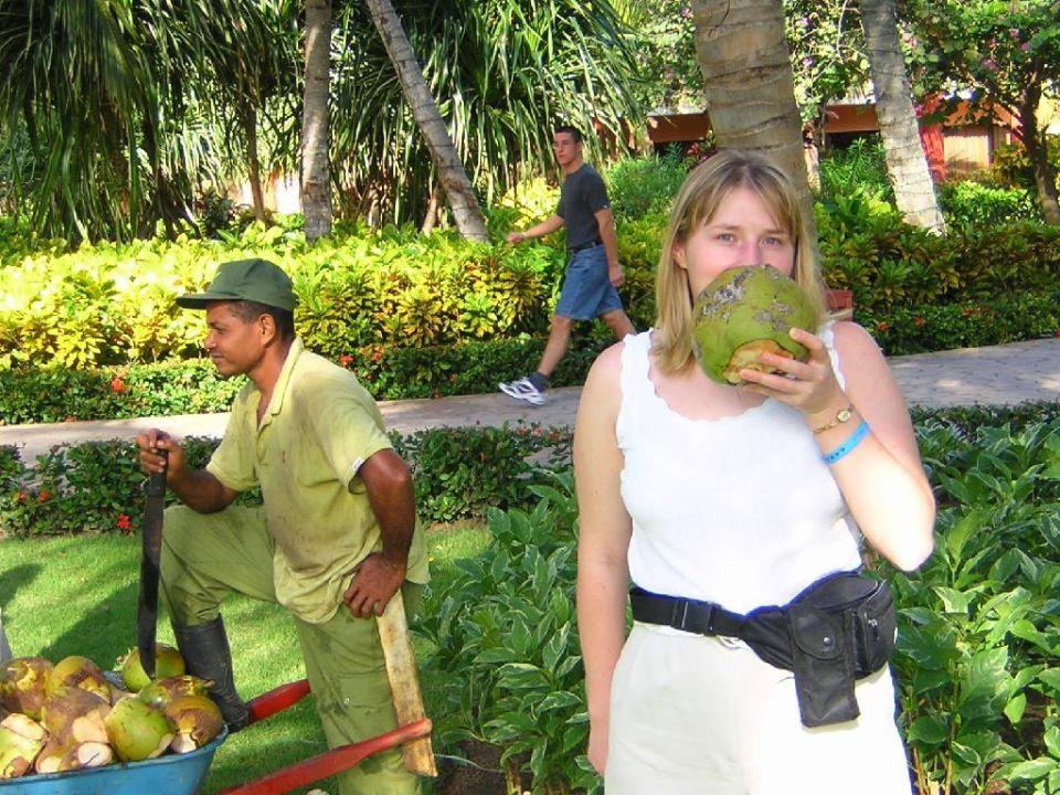 Parklandschaft Domenicana IBEROSTAR Dominicana