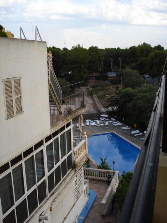 Pool Hotel Amazonas