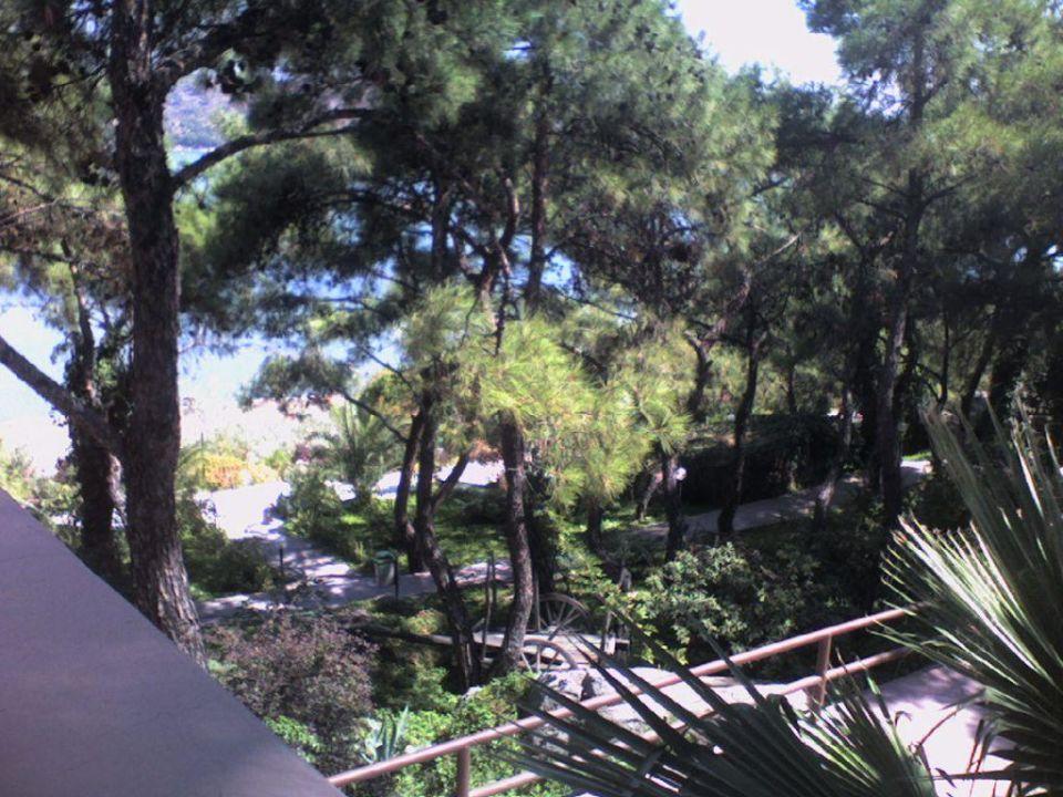 Vom Balkon aus Hotel Ayvalik Beach