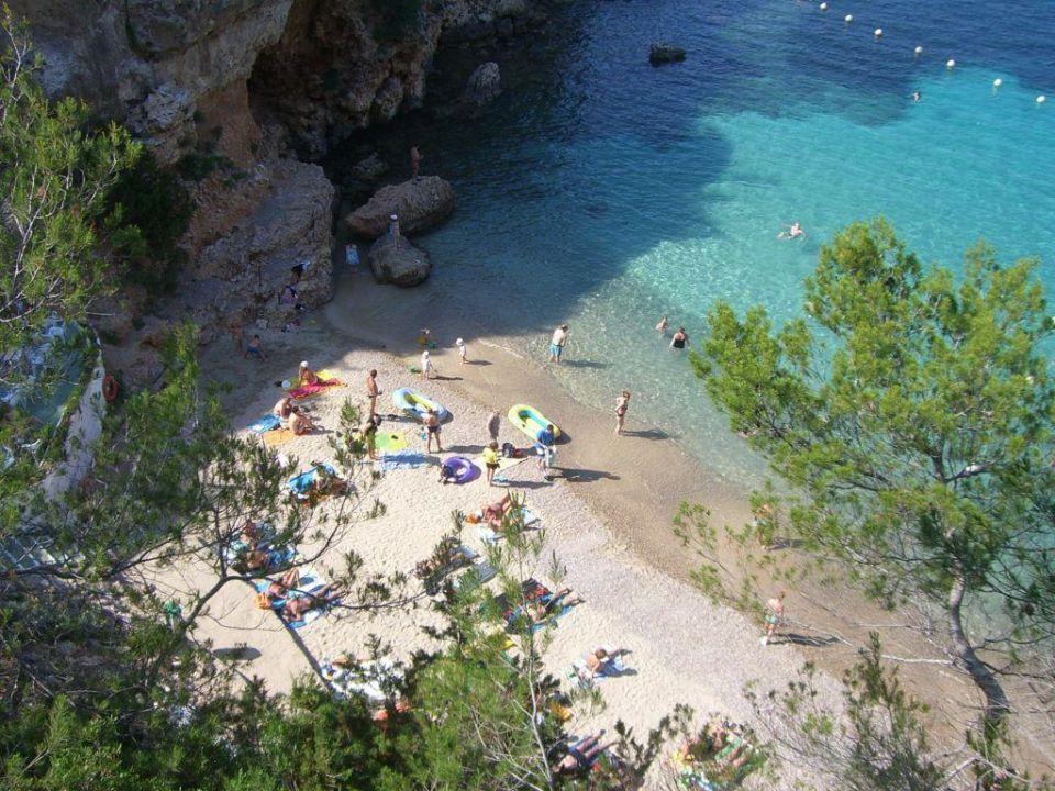 Strand Portinatx Beach Club Hotel Portinatx Holidaycheck Ibiza