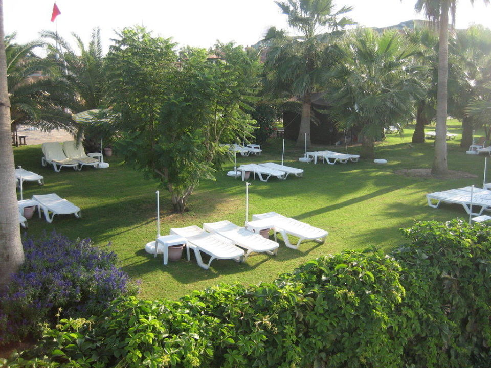 Teil des Gartens Hotel Club Gypsophila Holiday Village