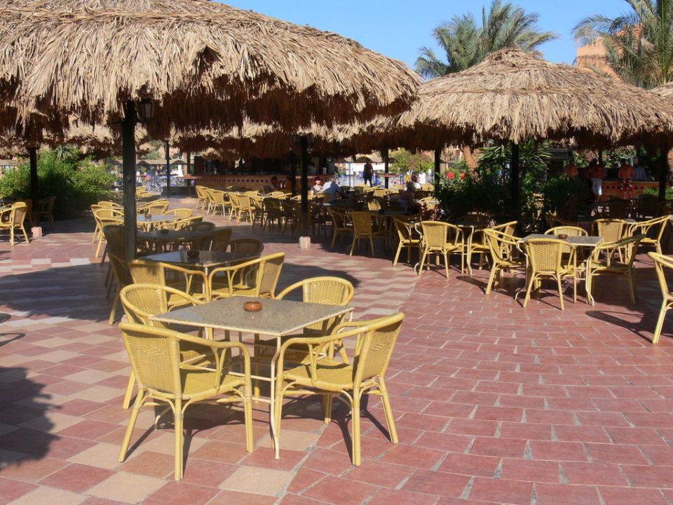 Poolbar Jaz Makadi Oasis Club & Resort
