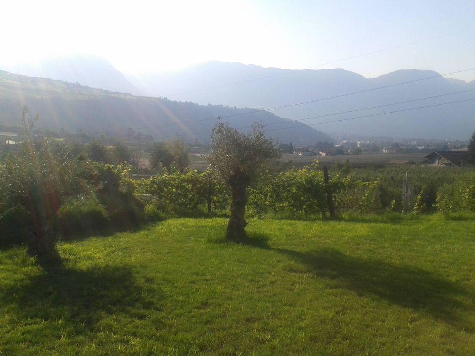 Aussicht von der Terrasse in Richtung Dorf Tirol Hotel Ultenerhof