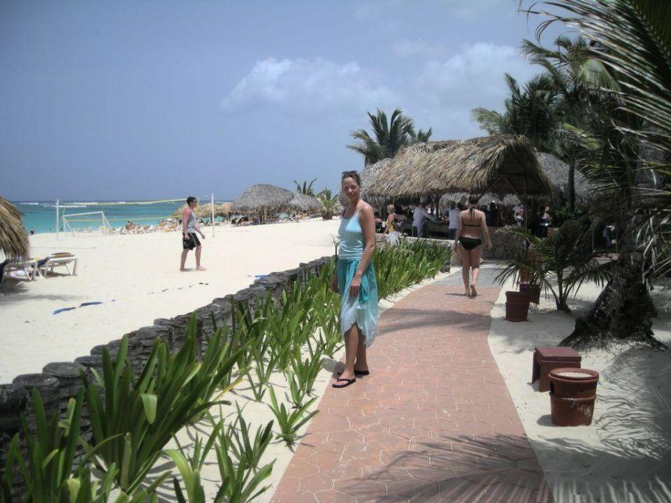 Einer der Wege Richtung Strand Iberostar Dominicana